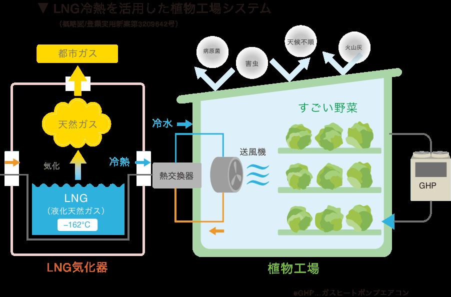 LNG冷熱を活用した植物工場システム