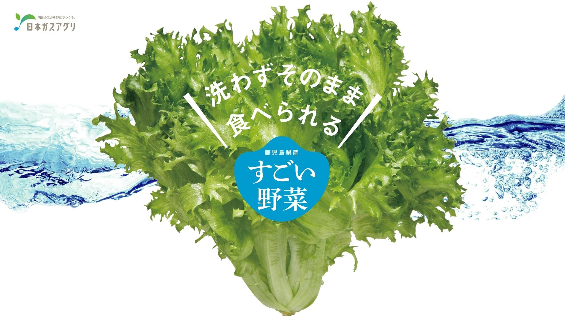 洗わずそのまま食べられる 鹿児島県産「すごい野菜」